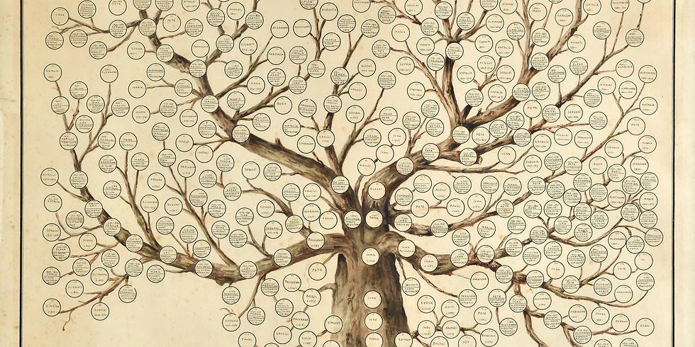 Alberi genealogici online - seconda parte