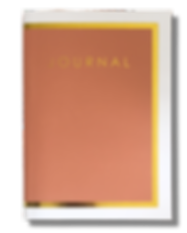 Pink Journal Long Shadow.png