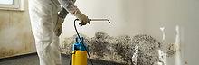mold-remediation-01-1.jpg
