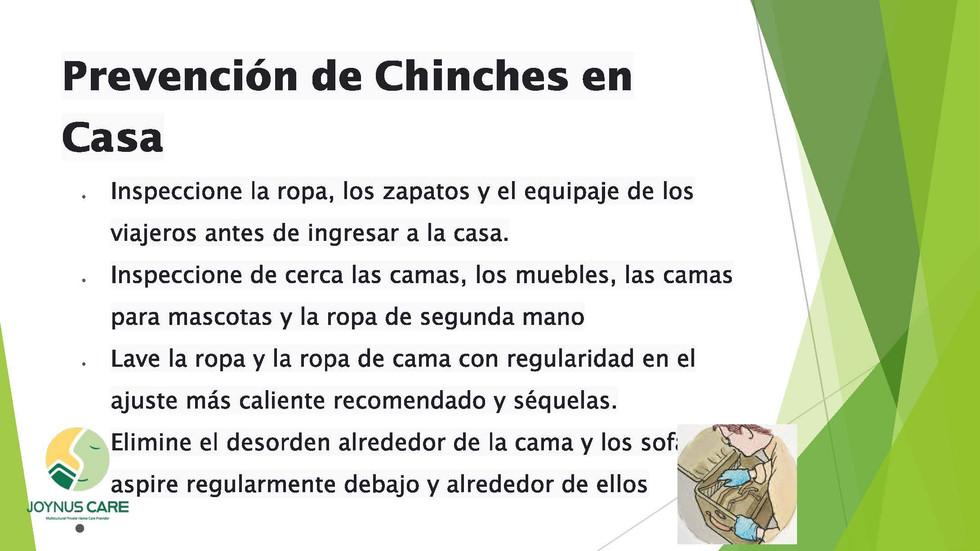 Chinches Alerta_08.jpg