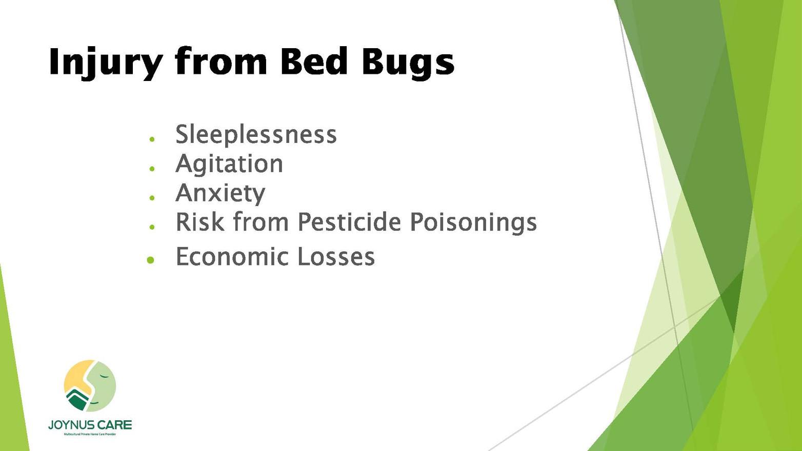 Bed Bug_04