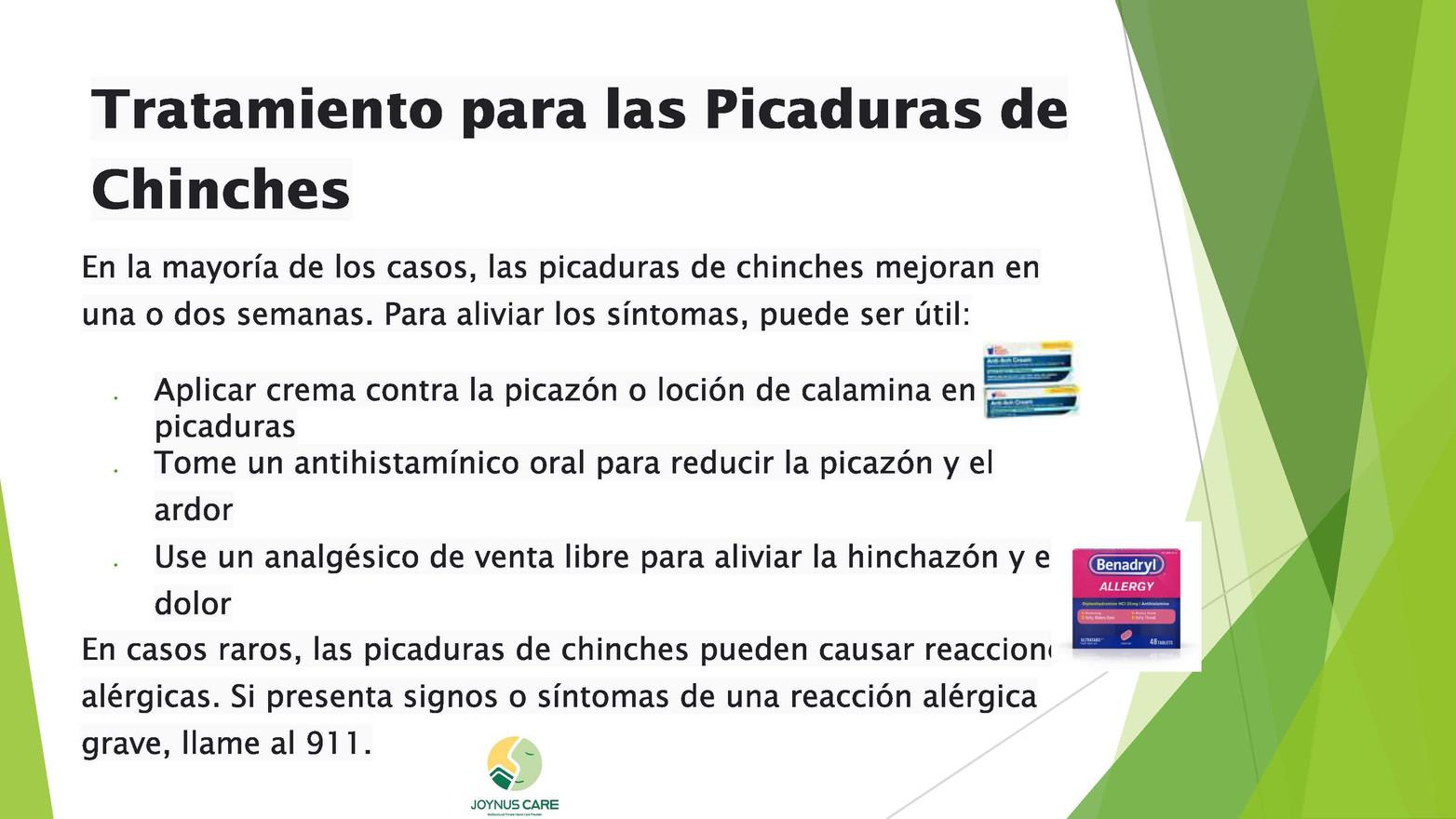 Chinches Alerta_05.jpg