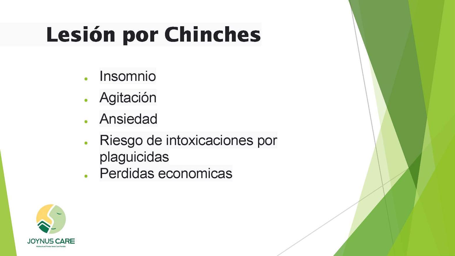 Chinches Alerta_04.jpg