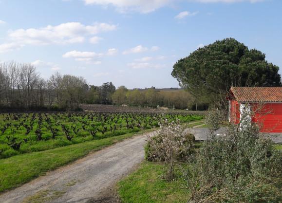 jardin et vue