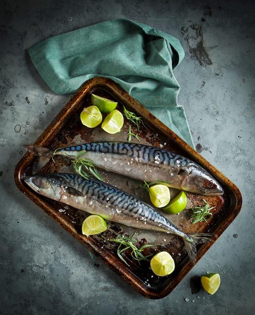 Mackerel-25.jpg