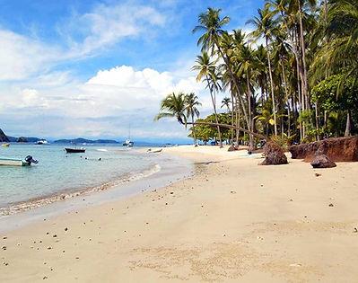 playa-isla-tortuga-costa-rica.jpg