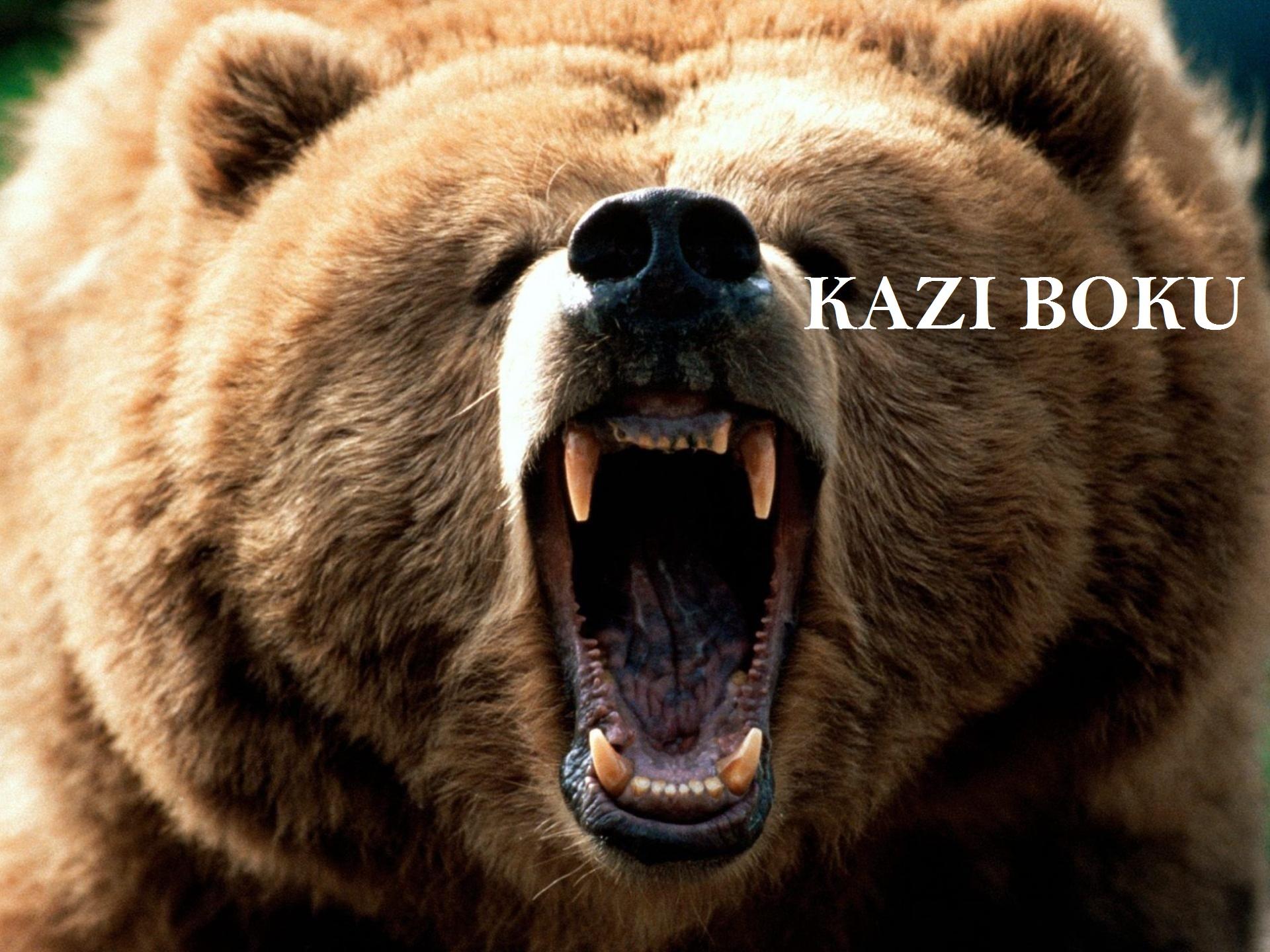 Kazi Boku