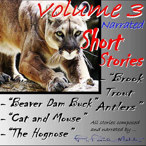Short Stories, Volume 3