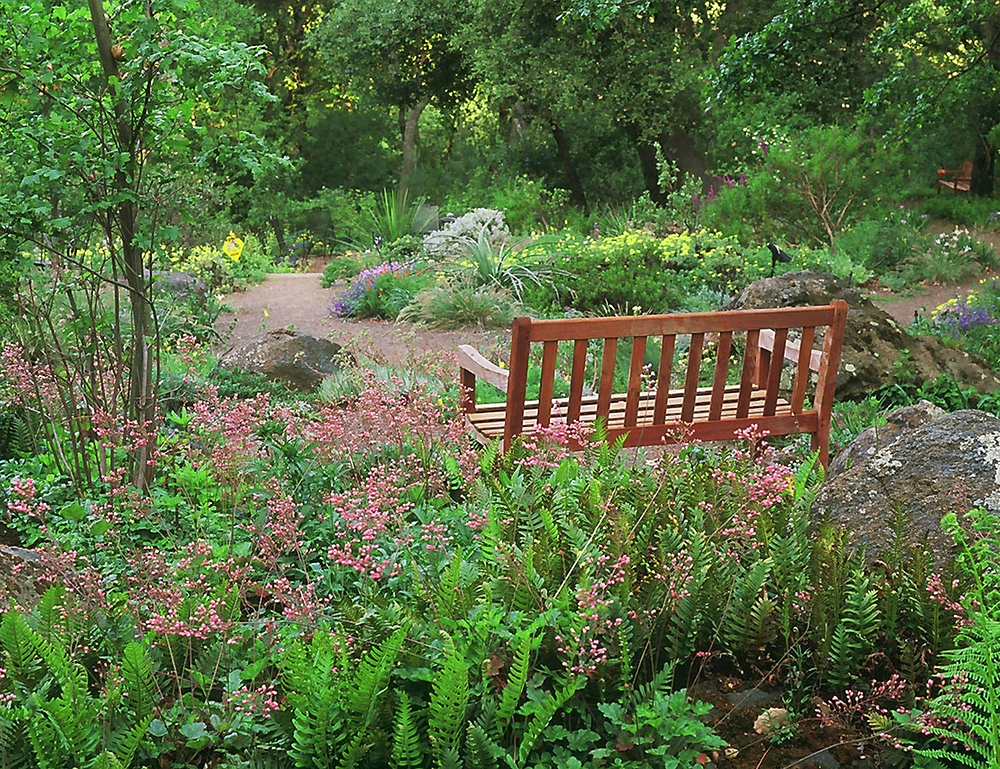 a bench at the end of garden path