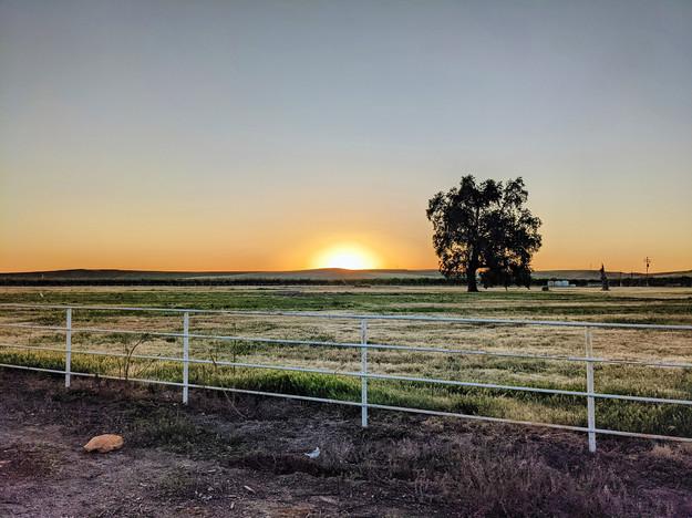 Angad Doad, Golden Plains
