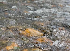 Noey Frausto, Thorburn River Park Bedrock