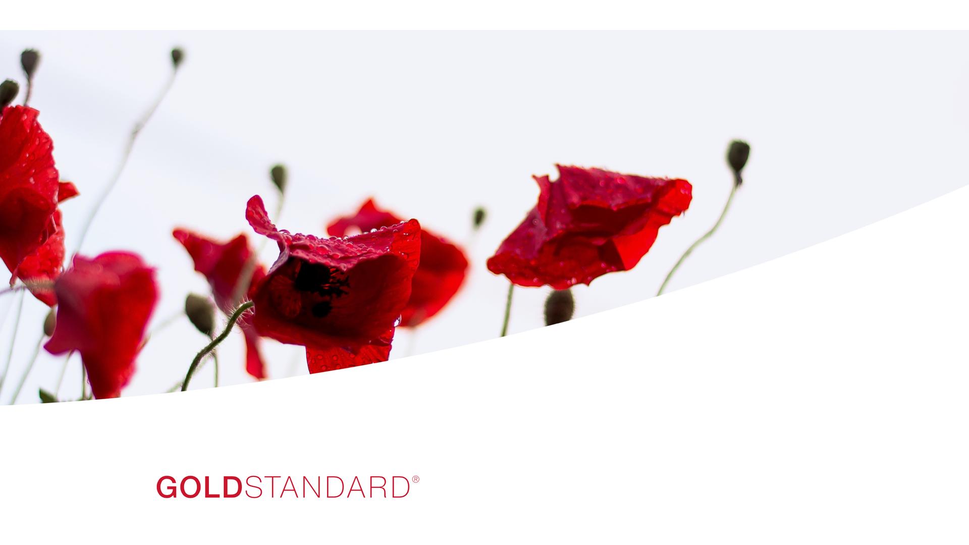 Goldstandard Website