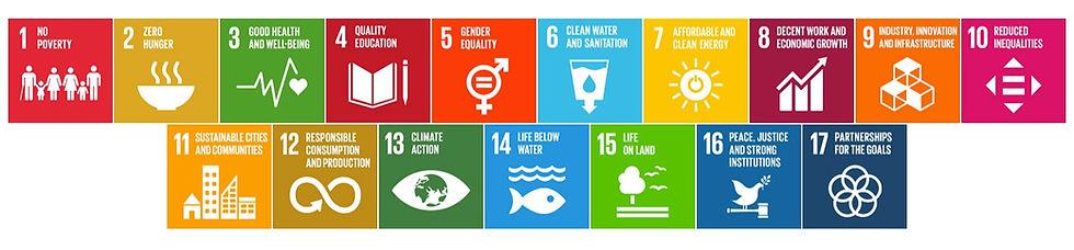 SDG-banner-_edited.jpg