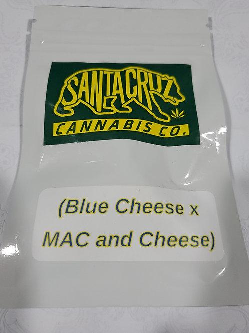 Blue Cheese x Mac & Cheese