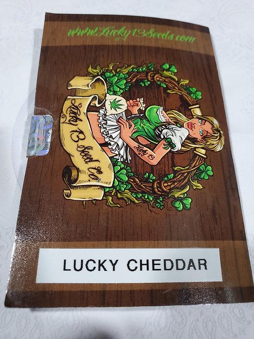 Lucky Cheddar + freebies