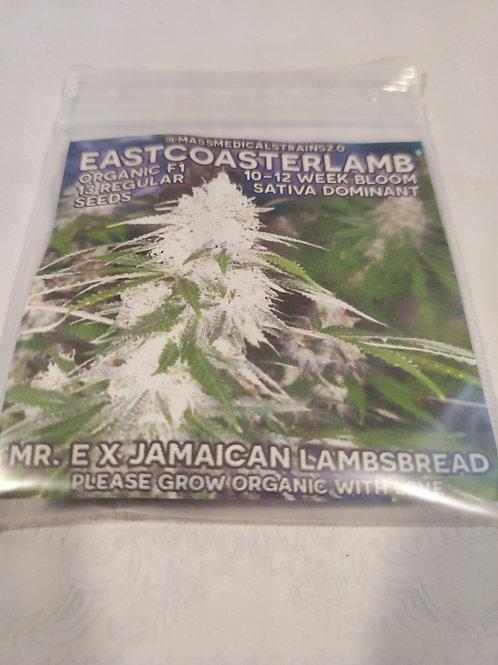 Eastcoasterlamb