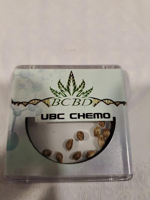 UBC Chemo