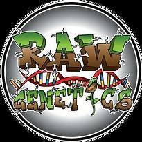 raw-genetics2.png