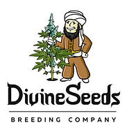 divine-seeds_300.jpg