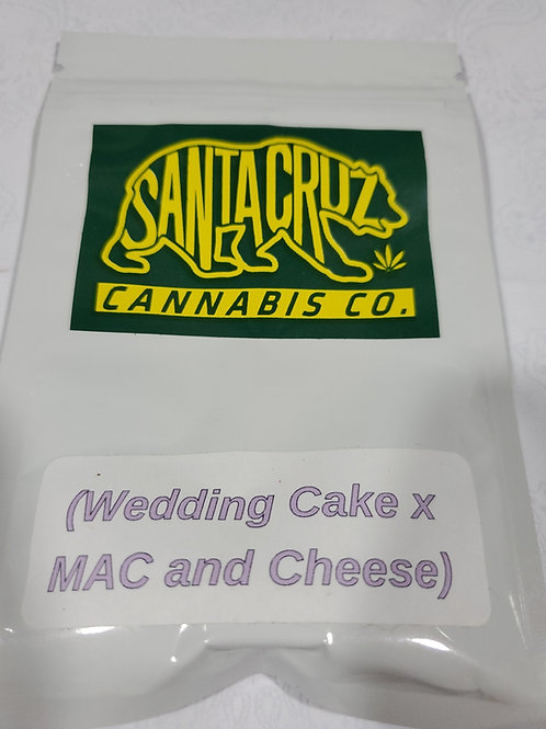 Wedding Cake x Mac & Cheese