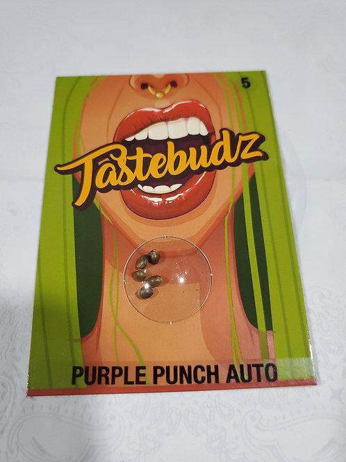 Purple Punch Auto + freebies