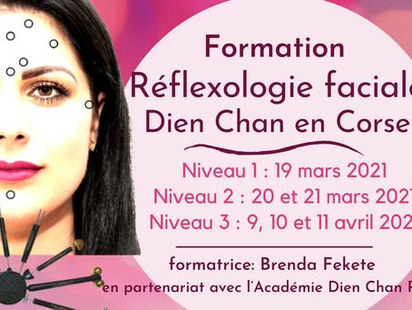 Formation Réflexologie Faciale en Corse