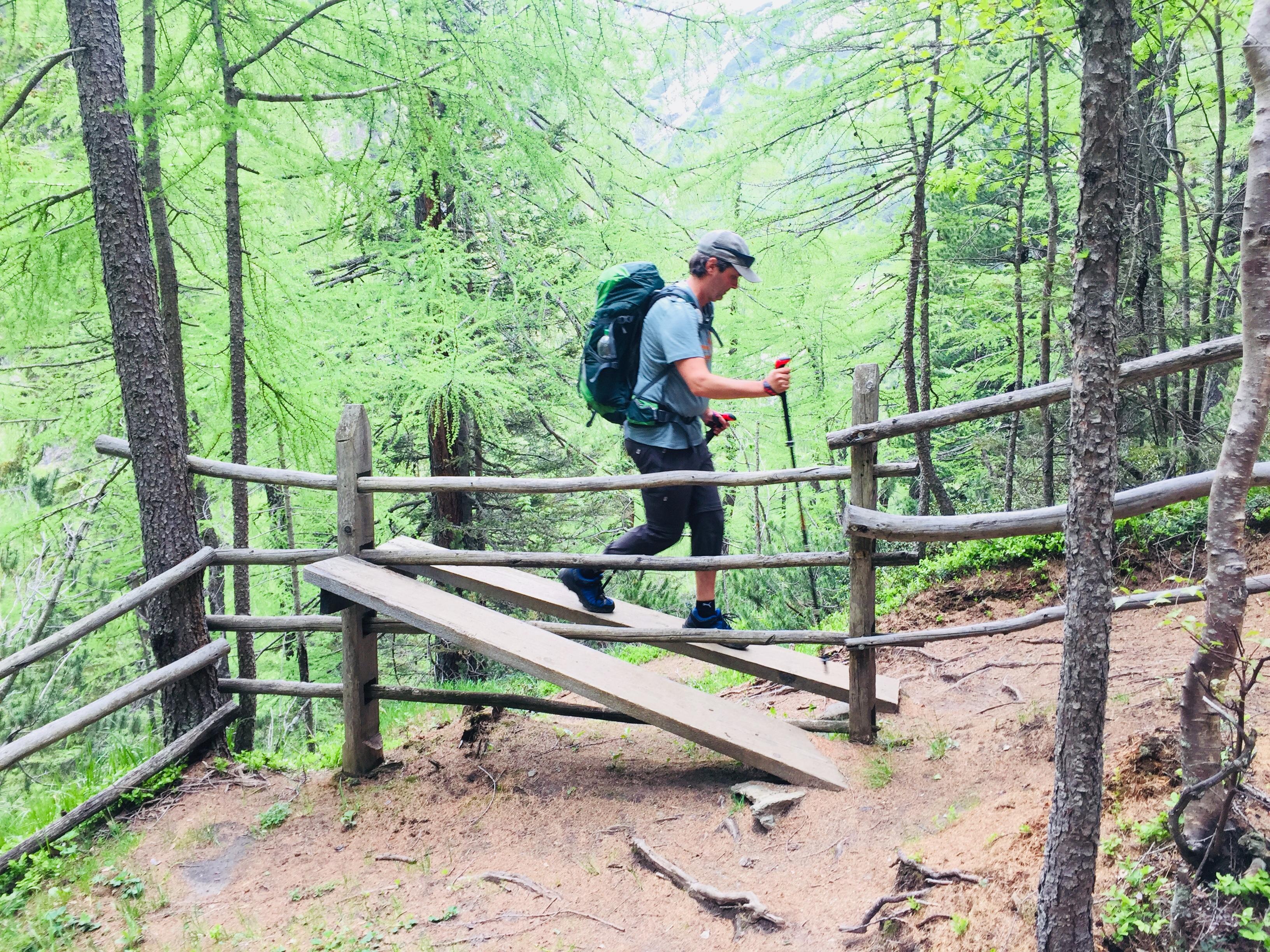 E1-4 Adi Rampe Wald