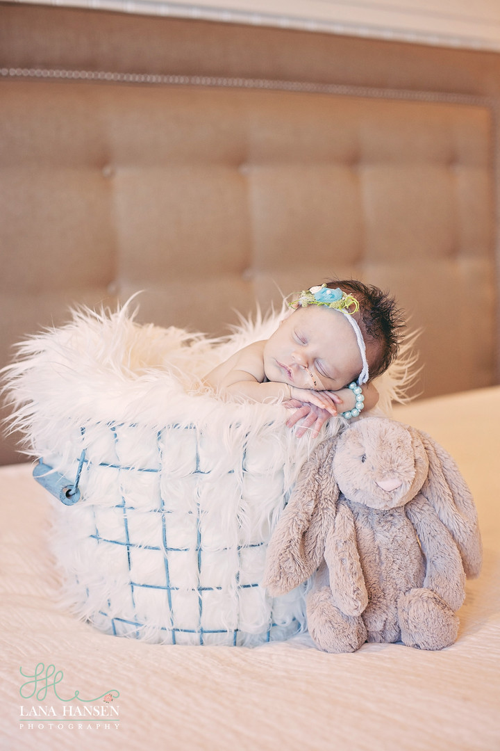Smith Newborns {Utah Newborn Photographer}