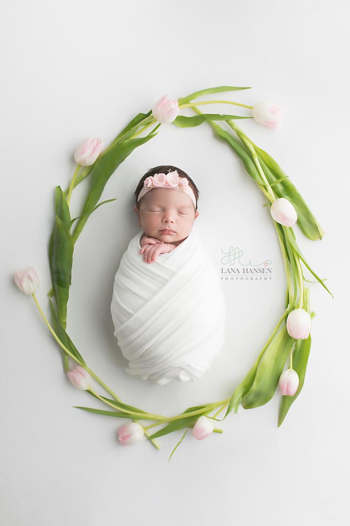 Neal Newborn {Newborn Photography}