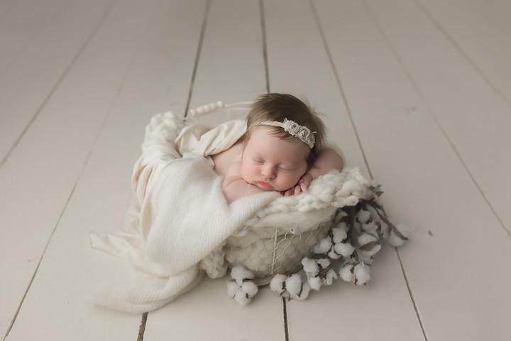 Thalman Newborn {Newborn Photography}