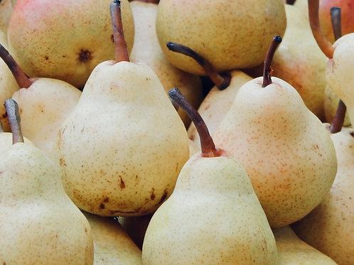 Pear China (4pcs)