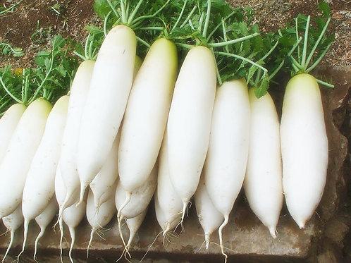 White radish China (1kg)