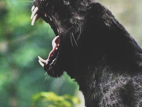 Comment gérer ma colère ?