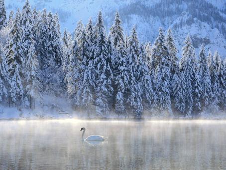10 astuces pour gagner de l'énergie à l'arrivée de l'hiver