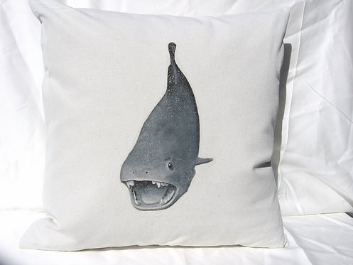 Whale of a Shark
