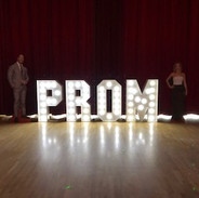 4ft PROM Letters