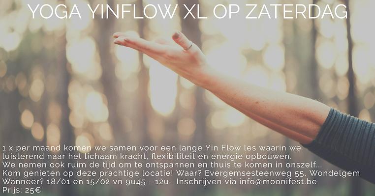 Yin FLOW XL.png