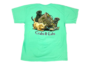 Teach's Lair Marina Crabs & Labs Aqua