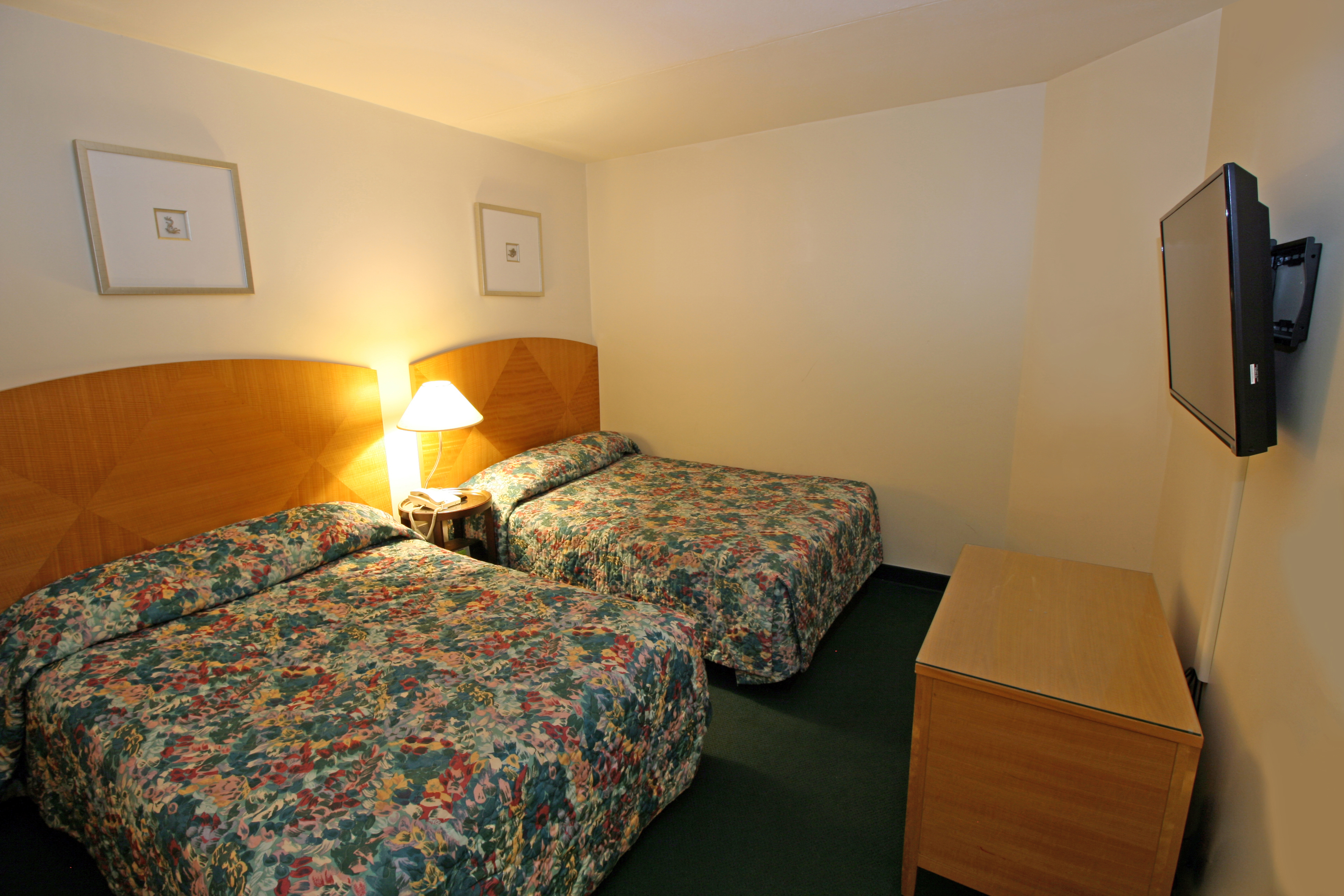 Two Room Suite 2