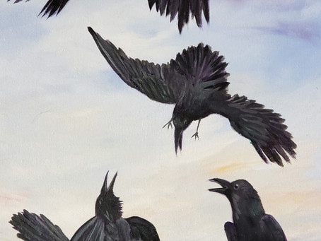Rook, Raven, or Crow on Trump