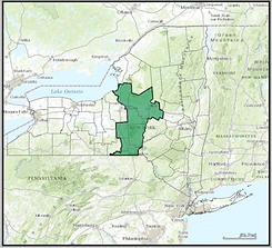 New_York_US_Congressional_District_22.pn