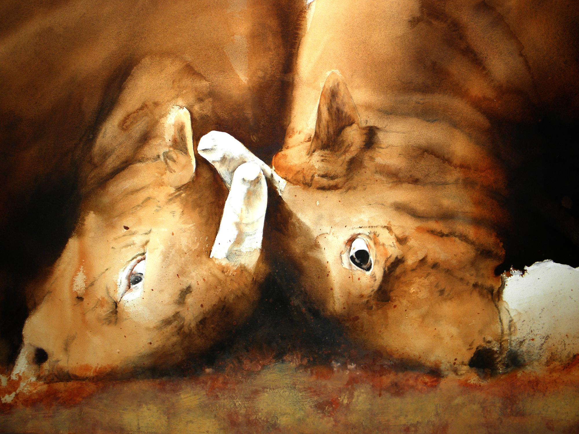 소싸움03 황토혼합116cm72cm  2012