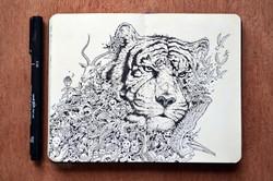 moleskine_doodles__white_tiger_by_kerbyrosanes-d6zuuv3