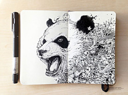 detailed-doodless-kerby-rosanes-5__880