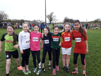 Huge Success in Cross Country