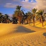 oasis-150x150.jpg