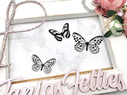 3D Transparent Butterflies - Monochrome