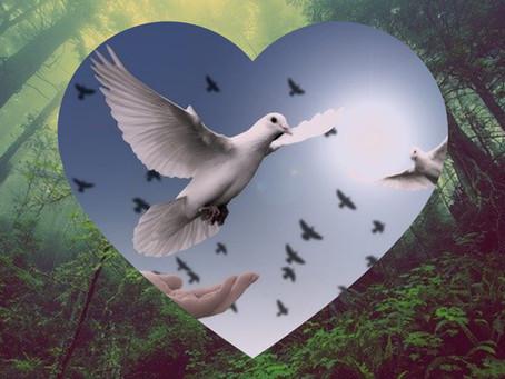 February 2021 | Wisdom of the Heart