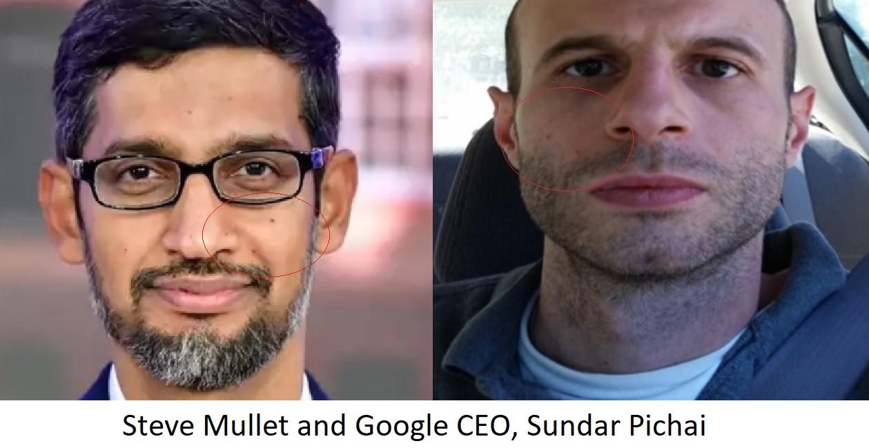sundar pichai and steve mullet mole patt
