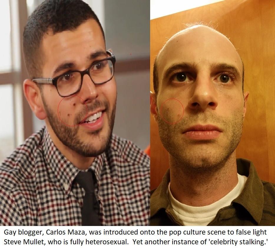 Gay Blogger Carlos Maza used to False Li